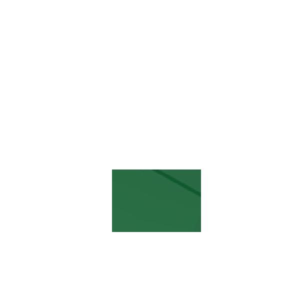 Picture of Green Rectangular Concave Lens suit D16LMT1/D16LAT