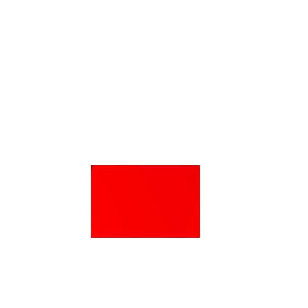 Picture of Red Rectangular Flat Lens suit D16LMT1/D16LAT1